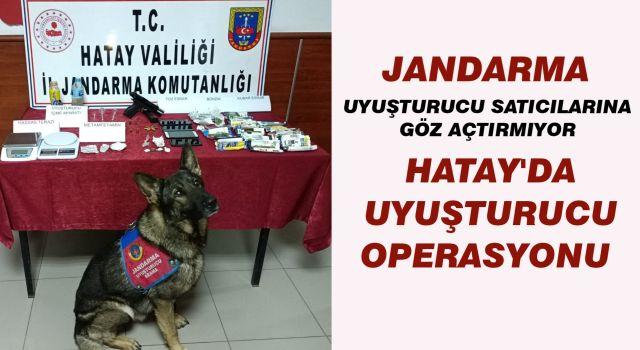 Hatay'da uyuşturucu satıcılarına operasyon